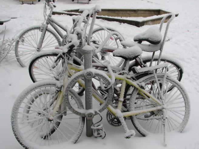 Winterised bikes