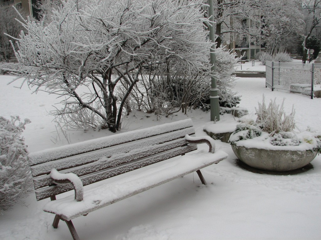 Winter Park Bench