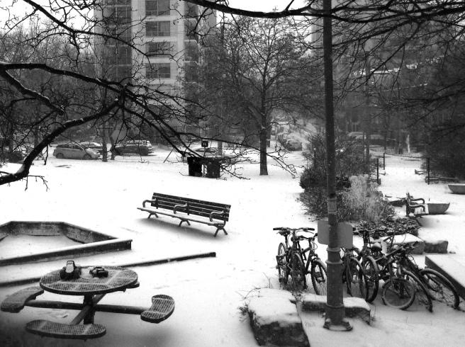 A Winter Park (1).  © Colline Kook-Chun, 2013