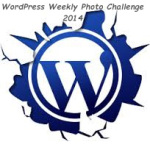 wordpress photo challenge -2014