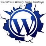 wordpress photo challenge -2014