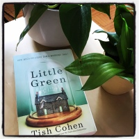 Book Review: Little Green by Tish Cohen