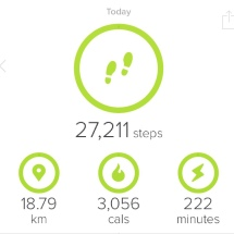My steps for the day!