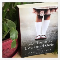 Teaser Tuesday: The Home for Unwanted Girls by Joanna Goodman